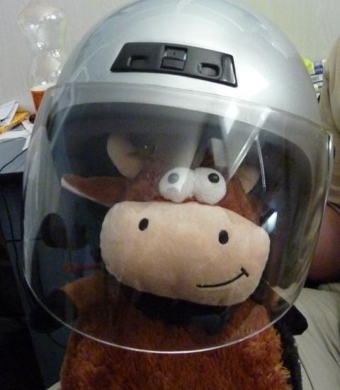 Бычок в шлеме