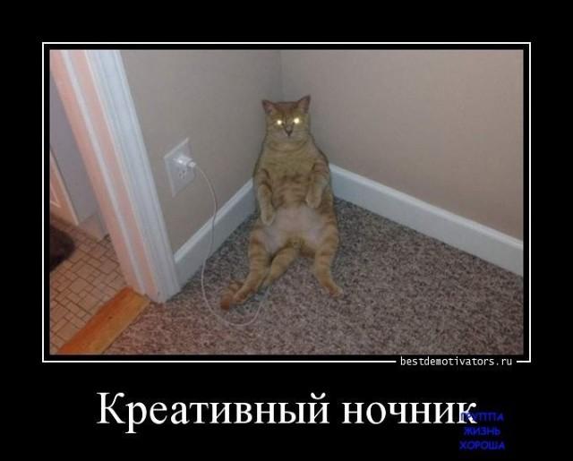 image-cf71cd63ce0ca0705ff7dbec1d26799bdc997cac349e4eae27f416fdd551f054-V