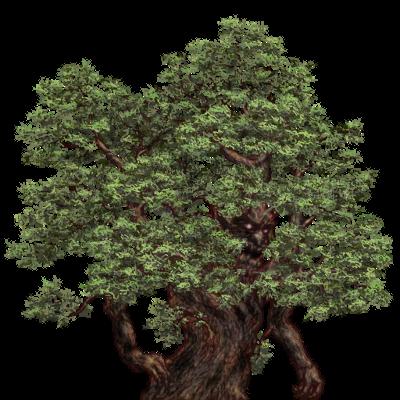 insane bonsai