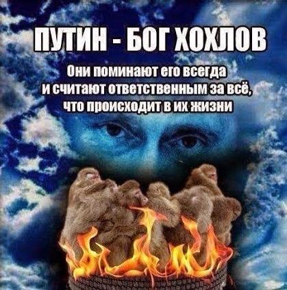 Putin bog