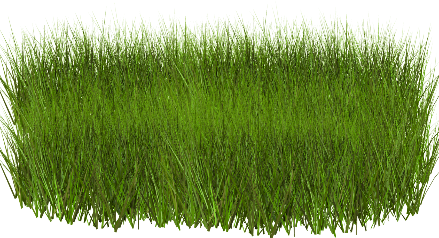 трава картинки пнг
