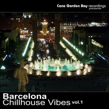 BCV1-2010