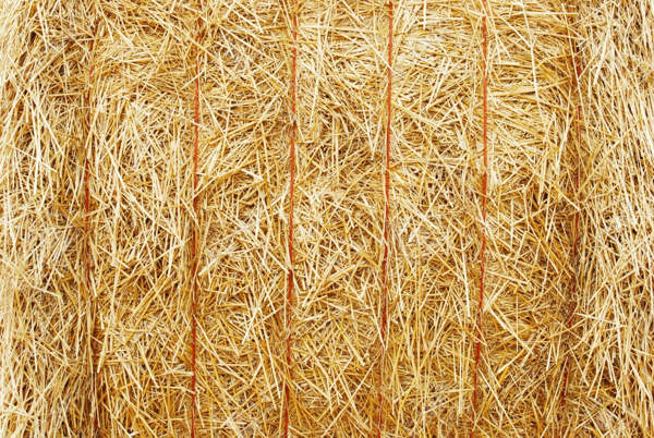 8880461-closeup-hay-bale-Stock-Photo