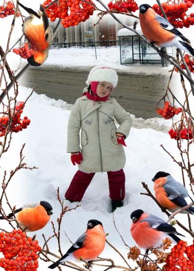 снегири 2