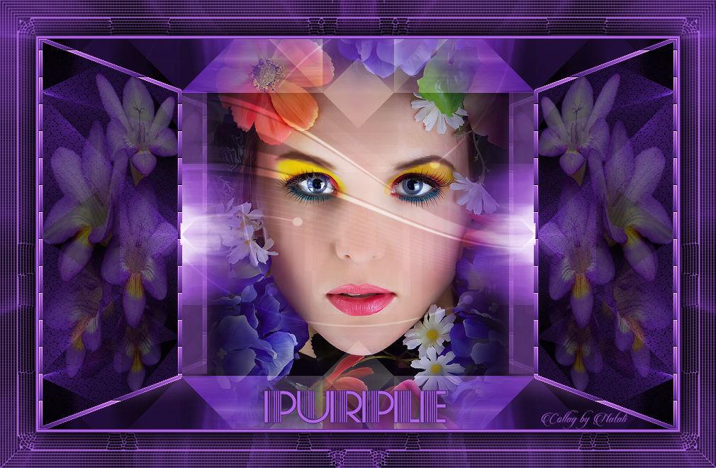 28.03.2018 Purple