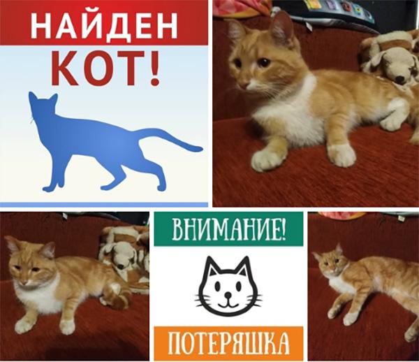 http://s02.yapfiles.ru/files/2146068/.jpg