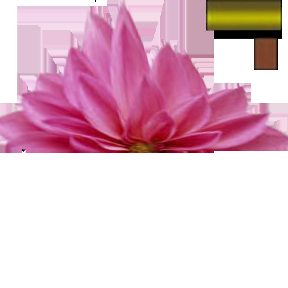 цветок текстура1