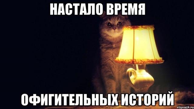 kot_14396791_big_[1]