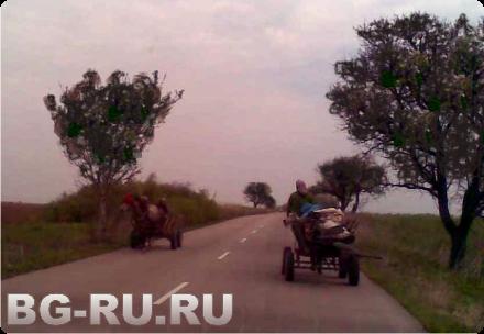 Цыгане в Болгарии