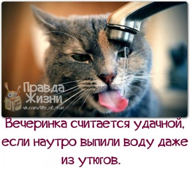 106306957_large_1382321895_frazochki13__1_