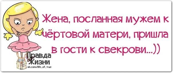 107540922_1385492147_frazochki4