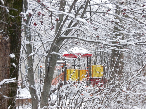 get-edited-image (1) в снегу