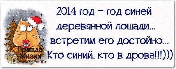 107671426_large_1385950291_frazochki18
