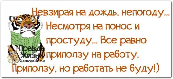 107671430_large_1385950304_frazochki12