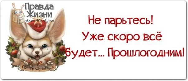 107927715_large_1386700665_frazochki25