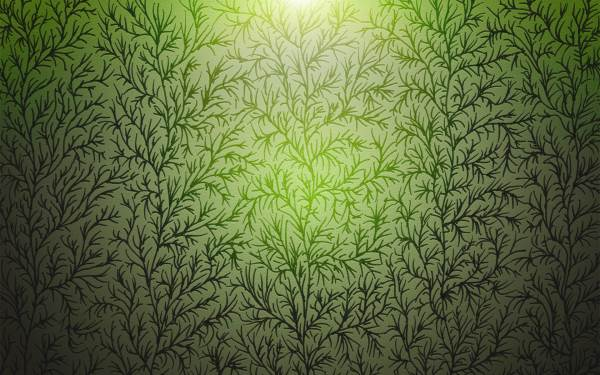 Drawn_wallpapers_Vector_Wallpapers_Branches_of_Wood_Texture_022652_