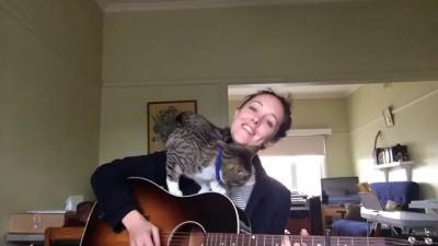 Песня с котом