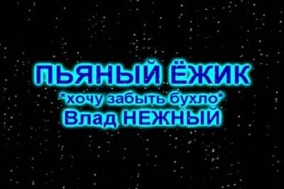 ПЬЯНЫЙ ЁЖИК