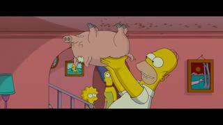 Свин-паук /spider-pig