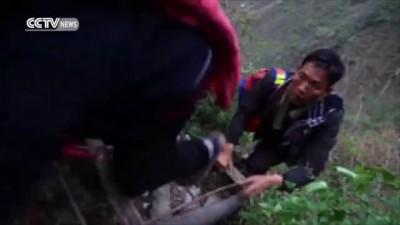 Children climb rattan ladder on a vertical cliff to get home from school