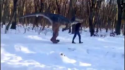 Так выгуливают динозавров в Ставрополе