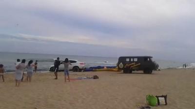 Олень на пляже