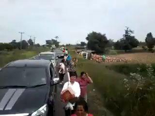 Пряники и грузовик
