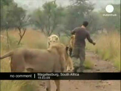 Человек и животные