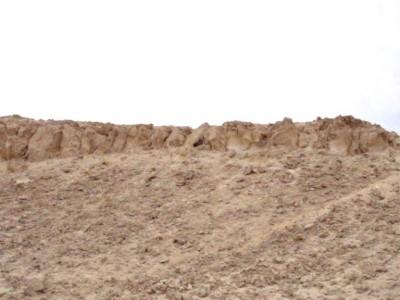 Ворон и филин в горах Хадабы