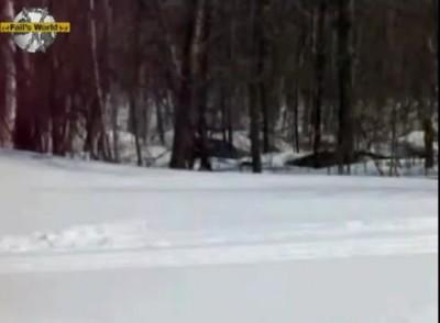 Снегоход - самоубийца