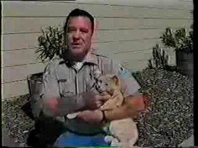 Кот против полиции