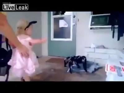 Тупая мамаша