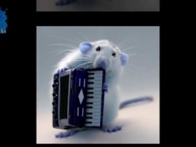 Сute animals. Прикольные мыши. Просто очаровашки