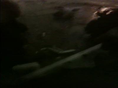Взрыв в Домодедово
