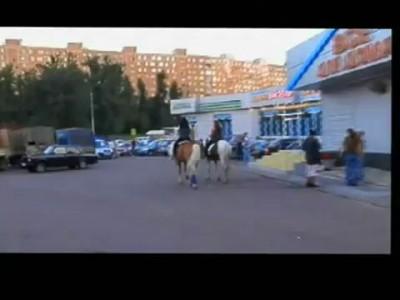 Прогулка лошадей в Бирюлёво Западном районе