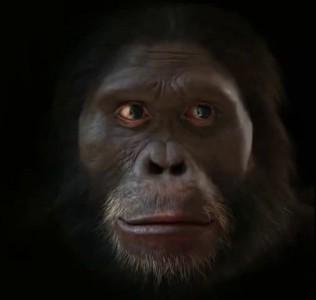 человек 6 миллионов лет назад