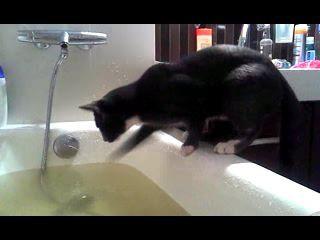 Водные процедуры 3