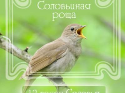 12 песен соловья - Соловьиная роща