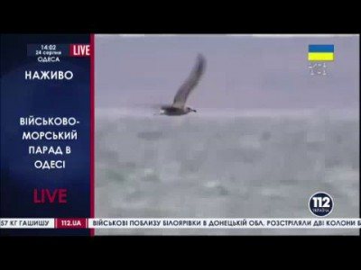 Военно-морской парад в Одессе #перемога 24.08.2014