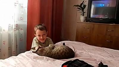 Не обижай кота, сынок!