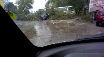 После дождика