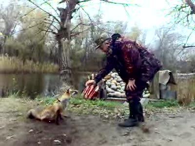 Запорожцу вместо собаки служит лис