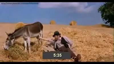 ))))) Узнать сколько время пощупав осла