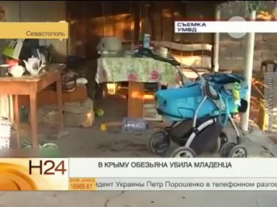 В Крыму обезьяна убила ребенка