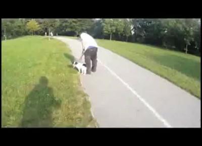 Месть хозяину собаки