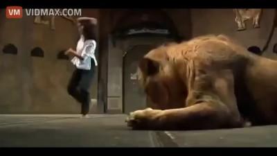 атака льва