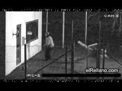 Два феерических мудака пытались разбить стекло