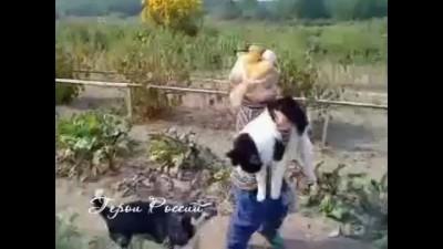 Маленькая девочка не дала в обиду своего кота