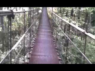 подвестной мост р.Белая