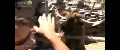 Пацанский таз рулит!!! Спор!)) Тазы валят!!))